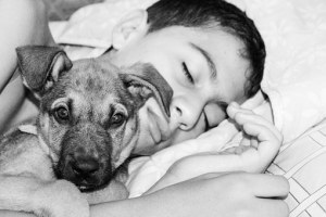sleeping boy with dog